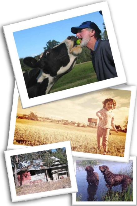 Join us for the 2012 National Centre for Farmer Health 'Celebrating Farm Life' photography competition